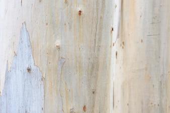 Close-up van dode houten kofferbak natuurlijke textuur oppervlak