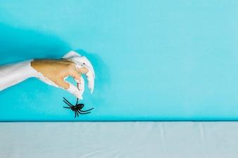 Hand met londen nagels die spinnen houden