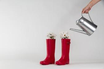 Hand water geven sommige planten