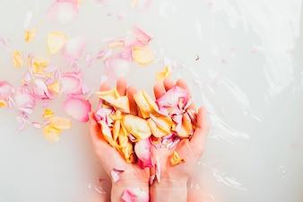 Handen met stapel bloemblaadjes
