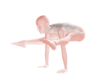Het verhogen van het lichaam alleen met handen