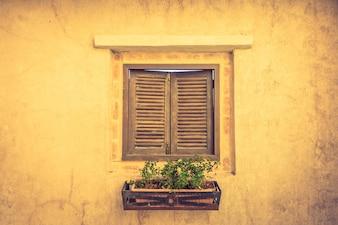 Houten raam met een bloempot met planten