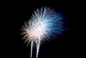 Kleurrijk vuurwerk in de nachtelijke hemel