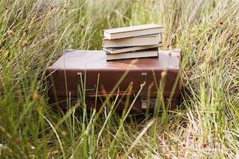 Koffer met boeken op de top in het gras