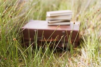 Koffer met boeken op de top