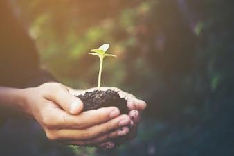Landbouw ontwikkeling beeld begin milieu jonge