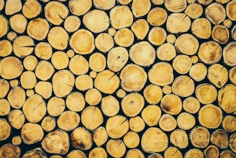 Log hout
