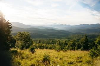 Niemand landschap houtige bewolkt scene