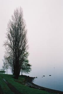 Nieuw-zeeland landschap, het landschap