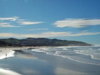 Nieuw-Zeelandse landschap - St Clair