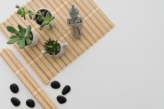 Planten, Boeddha en zwarte stenen