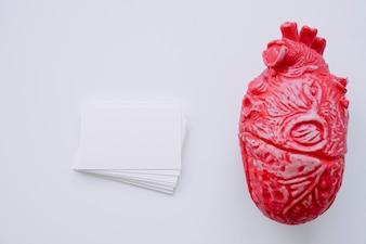 Realistisch hart met visitekaartjes