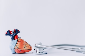 Stethoscoop en realistisch hart