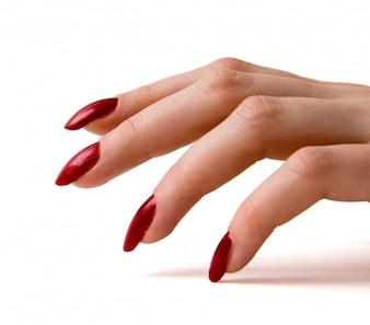 Vrouwelijke hand met rode manicure