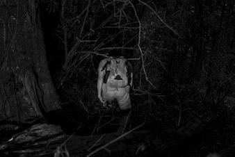Wandelaar in nachtzicht