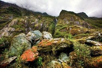 Waterval zeeland zuiden nieuwe regenwoud eiland