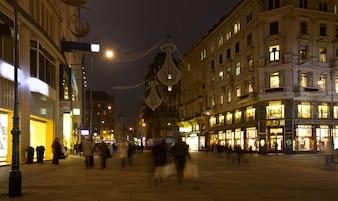 Wenen in de nacht. Oostenrijk
