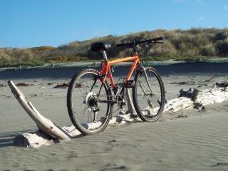 Wereld renner - berg yak, duinen
