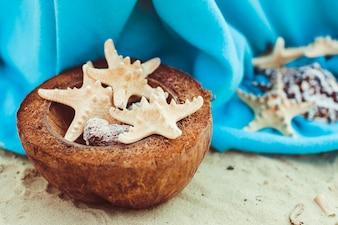 Zee sterren liggen kokosnoot