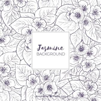 Achtergrond met schetsjes van jasmijn