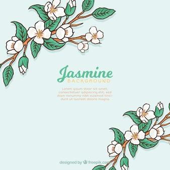 Achtergrond van takken met handgetekende jasmijn en bladeren