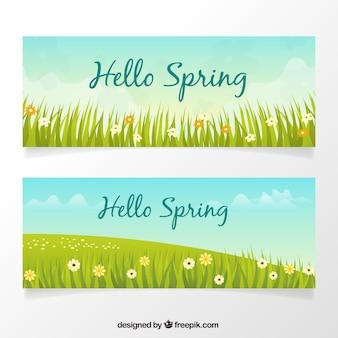 Banners van de lente met gras