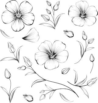 Bloemen elementen collectie