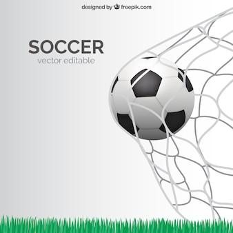 Doel van het voetbal