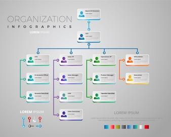 Elegante organisatie grafiek