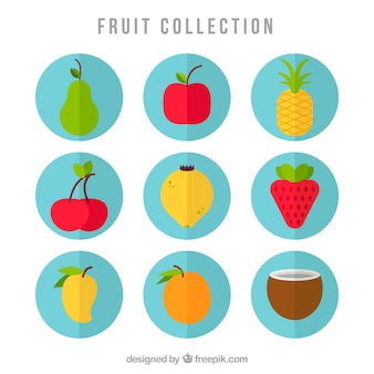 Fruit icoon collectie