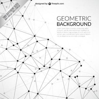 Geometrische achtergrond in netwerk-stijl