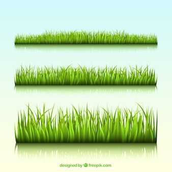 Groen gras grenzen
