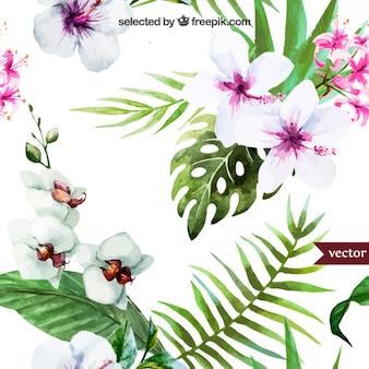 Hand geschilderde tropische planten
