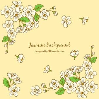 Hand getekende jasmijn gele achtergrond