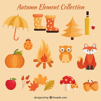 Herfst elementen met mooie stijl