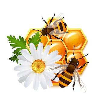 Honingraat bi bloemenembleem