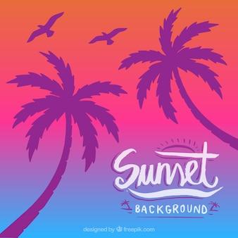 Kleurrijke achtergrond met silhouet van palmen en vogels
