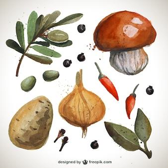 Met de hand geschilderd groenten collectie