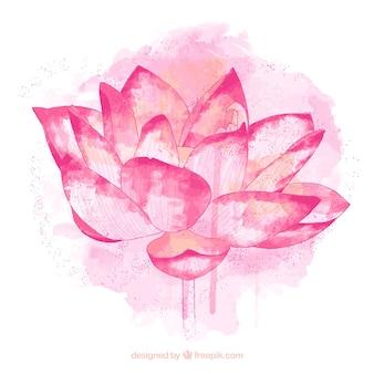 Met de hand geschilderd lotusbloem