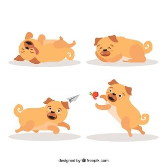 Mooie pugs met vlak ontwerp