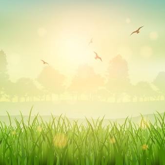 Natuur achtergrond van een met gras begroeide landschap