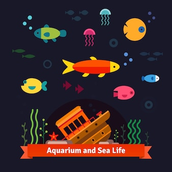 Onderwater zee leven. Aquarium