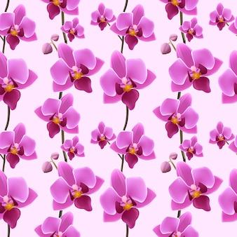 Orchidee bloesem naadloos patroon