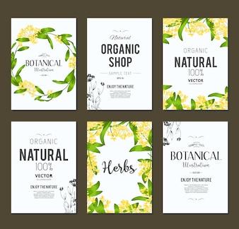 Organische winkel flyers