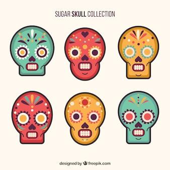 Pak van zes sier schedels met verschillende kleuren