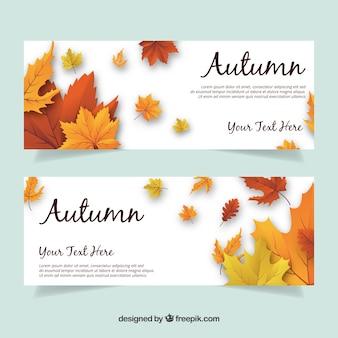 Realistisch pakje banners met bladeren