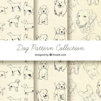 Schetsmatige hondenpatroonverzameling