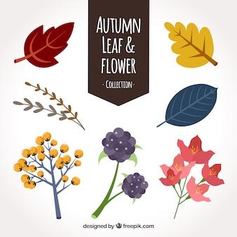 Set van herfstbladeren en planten