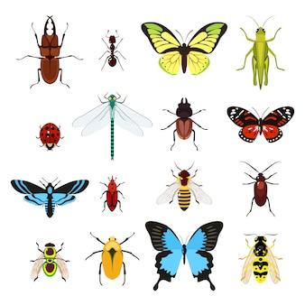 Set van verschillende insecten