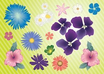 Tuin bloemen vector